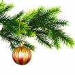 Christmas decoration isolated — Stock Photo