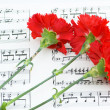 Romatic concept - red flower on music — Stock Photo