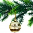 Christmas decoration isolated — Stock Photo #2529305
