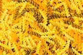 Close up of italian pasta — Stock Photo