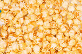 Sweet popcorn kernels — Stock Photo