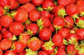 Lots of strawberries — Stock Photo