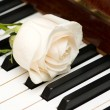 Romantic concept -  rose on piano — Zdjęcie stockowe