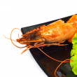Sushi and crab isolated — Stock Photo #2604146