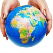 Two hands holding a globe isolated on wh — Stock Photo