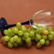 Cluster of green grapes and wine glass — Stock Photo
