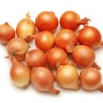 viele Zwiebeln, die isoliert auf weiss — Stockfoto