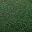 Pattern of green leather — Stock Photo #2659780