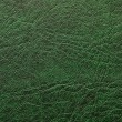 Stock Photo: Pattern of green leather