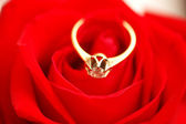 Gold ring with diamond on rose — Stock Photo