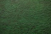 Pattern of green leather — Stock Photo