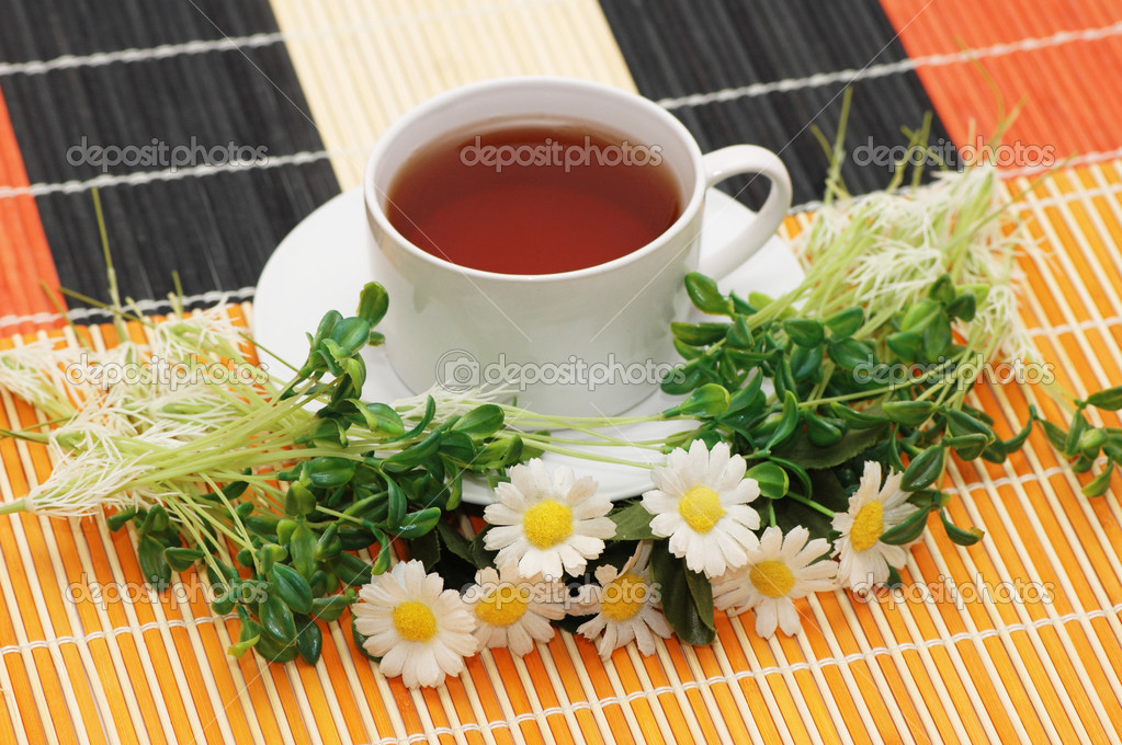 Cup of tea with herbs and daisies  Stock Photo #2652281