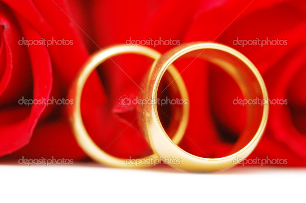 Two gold wedding rings  and red roses   Stock Photo #2654950