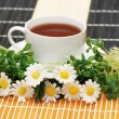 Cup of tea with herbs and daisies — Stock Photo #2660183