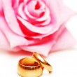 Two wedding rings and pink rose — Stock Photo