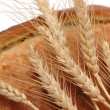 Wheat ears and bread loaf isolated - Stock Photo