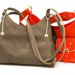 Woman bags isolated on the white — Stock Photo