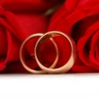 Red roses and rings isolated — Stock Photo #2685393