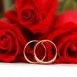 Two gold wedding rings and roses — Stock Photo