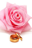 Two wedding rings and rose — Stock Photo