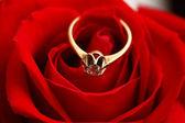 带钻石的黄金戒指 — 图库照片