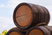 Oak kegs with wine — Stock Photo