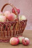 Wattled basket with apples — Stock Photo