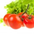 Red tomatoes and green leaves of salad. — Stock Photo