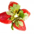 Berry of strawberry — Stock Photo