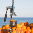 Oranges and manual press — Stockfoto