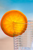 Glass and orange segment — Stock Photo