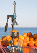 Oranges and manual press — Stock Photo