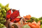 Sušené květiny — Stock fotografie
