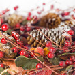 Christmas garland — Stock Photo #1184636