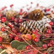 Christmas garland - Stock Photo