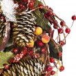 Christmas garland — Stock Photo #1205634