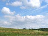 Green field under blue sky — Stock Photo