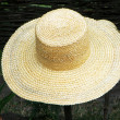 Straw hat — Stock Photo #1343794