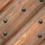 Door with metal rivets — Stock Photo #1214174