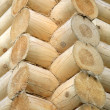 Wooden logs — Stock Photo #1261120