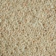 Carpet — Stockfoto