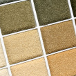 Stock Photo: Carpet covering