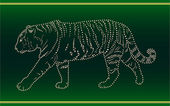 лента с тигром — Стоковое фото