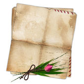 Old paper with rose and bamboo leaf — Stock Photo