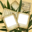 Two foto slide for foto with bamboo — Εικόνα Αρχείου #1238625