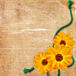 Old grunge background with flower and ro — Stock Photo