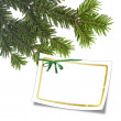 Card with christmas tree and white frame — Stock Photo