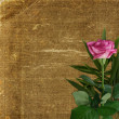 Grunge background for design with rose — Stock Photo