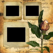 Old slides for photo with old rose — Stock Photo