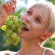 Grapes — Stock Photo #1207338